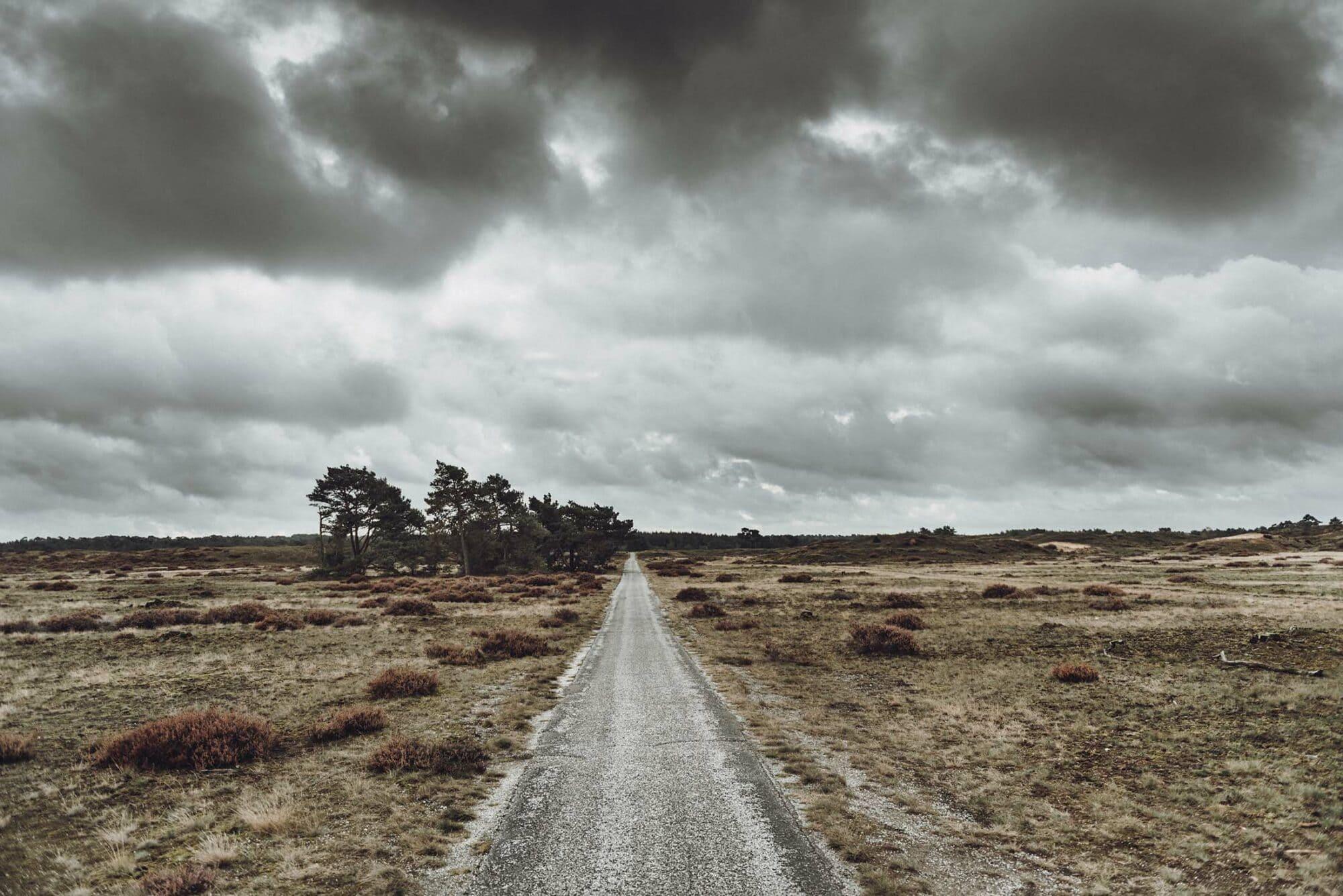 Fotoworkshop_Veluwe_ROCKYROADSTRAVEL