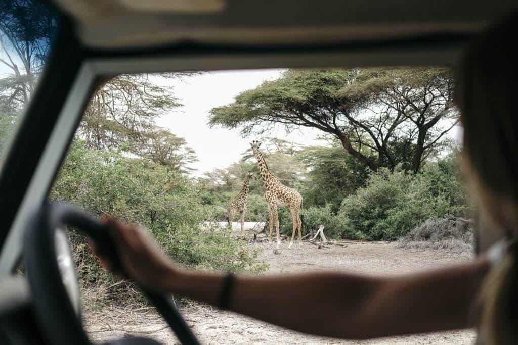 SAFARI SELFIE | ZELF RIJDEN DOOR TANZANIA'S NATUURPARKEN 1