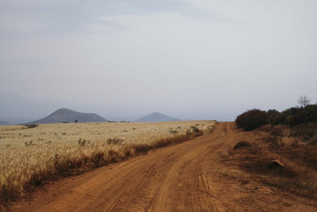 SAFARI SELFIE | ZELF RIJDEN DOOR TANZANIA'S NATUURPARKEN 14