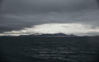 Walvisspotten in IJsland - Rocky Roads Travel